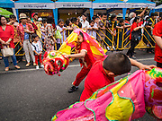 """19 FEBRUARY 2015 - BANGKOK, THAILAND:  A children's lion dance troupe performs for Chinese New Year on Yaowarat Road in Bangkok. 2015 is the Year of Goat in the Chinese zodiac. The Goat is the eighth sign in Chinese astrology and """"8"""" is considered to be a lucky number. It symbolizes wisdom, fortune and prosperity. Ethnic Chinese make up nearly 15% of the Thai population. Chinese New Year (also called Tet or Lunar New Year) is widely celebrated in Thailand, especially in urban areas that have large Chinese populations.   PHOTO BY JACK KURTZ"""