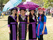 Portrait of four young Hmong Der (White Hmong) women wearing contemporary Hmong traditional costume at Ban Km 52 Hmong New Year festival, Vientiane province, Lao PDR. The Hmong celebration of New Year is based on the lunar calendar. This important time is an opportunity to honour ancestors and spirits through offerings and rituals and to partake in games, sports, feasts, shows, bullfights and courtship. The Hmong are the third largest ethnic group in Laos. One of the most ethnically diverse countries in Southeast Asia, Laos has 49 officially recognised ethnic groups although there are many more self-identified and sub groups. These groups are distinguished by their own customs, beliefs and rituals.