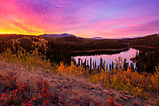 """Long Lake Sunrise - Yukon Territory<br /> <br /> Available sizes:<br /> 18"""" x 12"""" print <br /> <br /> See Pricing page for details. <br /> <br /> Please contact me for custom sizes and print options including canvas wraps, metal prints, assorted paper options, etc. <br /> <br /> I enjoy working with buyers to help them with all their home and commercial wall art needs."""
