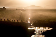 The lead bunch of female riders during stage 2 of the 2018 Absa Cape Epic Mountain Bike stage race held from Arabella Wine Estate in Robertson, South Africa on the 20th March 2018<br /> <br /> Photo by Greg Beadle/Cape Epic/SPORTZPICS<br /> <br /> PLEASE ENSURE THE APPROPRIATE CREDIT IS GIVEN TO THE PHOTOGRAPHER AND SPORTZPICS ALONG WITH THE ABSA CAPE EPIC<br /> <br /> {ace2018} Global sport and corporate event photography by Greg Beadle. Greg captures the energy and emotion of international events including the World Economic Forum, Tour de France, Cape Epic MTB and the Cape Town Cycle Tour