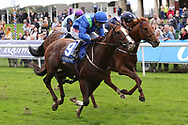 AQUARIUM (9) ridden by Franny Norton and trained by Mark Johnston winning The Download The Coral App Handicap Stakes over 1m 2f (£35,000)  during the October Finale meeting at York Racecourse, York, United Kingdom on 13 October 2018. Pic Mck Atkins