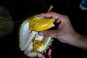 Musang King Durian Malaysia