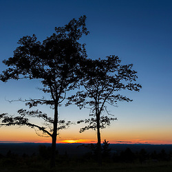 Tree silhouettes at sunset as seen from the summit of Mount Agamenticus in York, Maine.