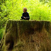 Boy sitting on Redwood stump in the Del Norte Coast Redwoods State Park