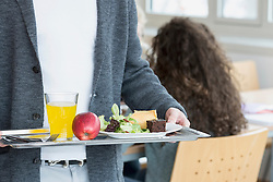 Mid section view of university student with his lunch in plate School, Bavaria, Germany