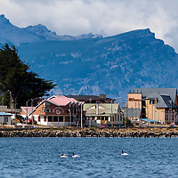 """According to """"Wikipedia"""" - Puerto Natales was founded on May, 1911 as a port for the sheep industry. During the last half of the 20th century the sheep industry declined and many people from Puerto Natales started to work in the coal mines of Río Turbio in Argentina. It has good tourism facilities, as it has become the base for excursions to the Torres del Paine National Park; the Cueva del Milodón Natural Monument (a cave complex used by prehistoric tribes and where remains of the extinct Giant Sloth have been found; the Bernardo O'Higgins National Park; and the Alacalufes National Reserve. The latter includes the Fjord of the Mountains, Cordillera Riesco and Cordillera Sarmiento."""