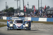March 16, 2013: 61st Mobil 1 12 Hours of Sebring. 16 Chris Dyson, Guy Smith, Butch Leitzinger, Dyson Racing Team