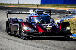 March 14, 2019 - Sebring, Etats Unis - 77 MAZDA TEAM JOEST (USA) MAZDA DPI MAZDA OLIVER JARVIS (GBR) TRISTAN NUNEZ (USA) TIMO BERNHARD  (Credit Image: © Panoramic via ZUMA Press)