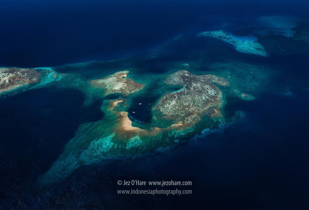 Coral reef near Komodo National Park, West Manggarai, Flores, East Nusa Tenggara, Indonesia.