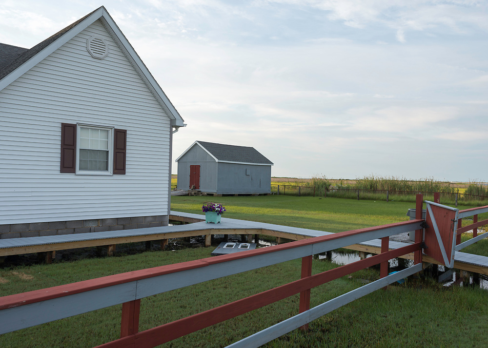 August 4, 2017 - Tangier Island, VA - Raised walkways protect homeowners from the marshland that dots almost every view of Tangier Island. <br /> Photo by Susana Raab/Institute