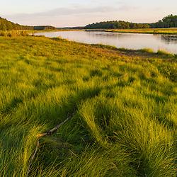 Salt marsh along the North River in Marshfield, Massachusetts. Near Emilson Farm.