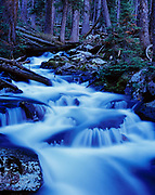 Kane Creek cascading through subalpine forest in the Pioneer Mountains, Salmon-Challis National Forest, Idaho.