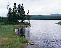Shore line of Second Connecticut Lake