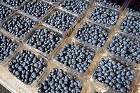 Fresh blue berries, farm produce for sale at a famers market.