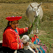 South America, Peru, Cuzco, Cusco, Tombomachay, Woman in traditional dress at historic Tambomachay in the hills above Cuzco, Peru.