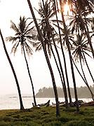 Fishing boats on the beach in Tangalle, Sri Lanka