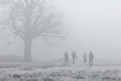 © Licensed to London News Pictures. 27/11/2020. London, UK. Fog and frost linger as people exercise in Bushy Park, south west London. Parts of the UK are experiencing freezing weather and low temperatures. Photo credit: Peter Macdiarmid/LNP