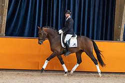 Vink Gerrel, NED,Blue Horse Monte Carlo TC<br /> Fotodag KWPN Hengstenkeuring 2021<br /> © Hippo Foto - Dirk Caremans<br /> 09/01/2021