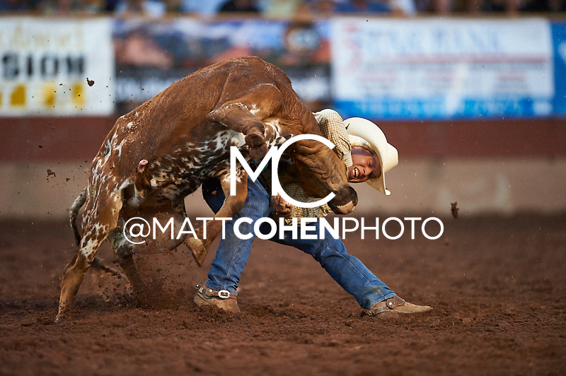 Steer wrestler Sterling Lambert of Fallon, NV competes at the Pikes Peak or Bust Rodeo in Colorado Springs, CO.<br /> <br /> <br /> UNEDITED LOW-RES PREVIEW<br /> <br /> <br /> File shown may be an unedited low resolution version used as a proof only. All prints are 100% guaranteed for quality. Sizes 8x10+ come with a version for personal social media. I am currently not selling downloads for commercial/brand use.