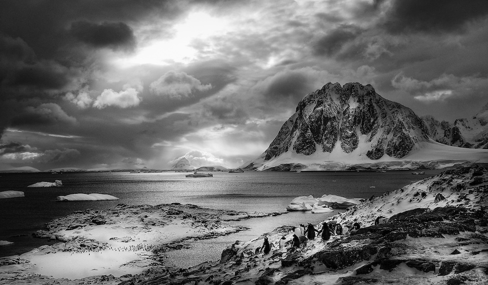 On this expedition, the plan had been to scuba dive and interact with penguins and the leopard seal underwater, but after a diving accident we had to abort the mission and stay on land, which gave me the opportunity to focus more on landscape photography instead of underwater photography, as was planned.
