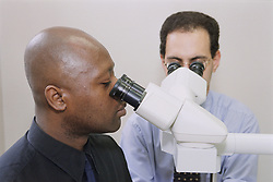 Doctors in Histopathology using multiheaded microscope to report patient biopsies,