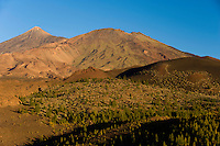 """The Teide volcano (the highest mountain of Spain, 3.718 m), and the """"Pico Viejo"""" (2.909) (right) from Montaña Samara, at sunset. Teide National Park, Tenerife Island, Canary Islands, Spain."""