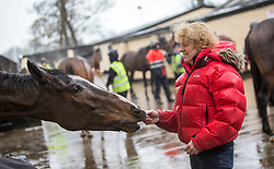 Horse Trainer Lucinda Russell at Arlary Stables in Kinross, With the horse One For Arthur which is running at Kelso on Saturday.