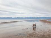 Sugar on the north shore beach of Flathead Lake