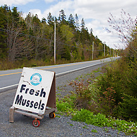 North America, Canada, Nova Scotia, Ship Harbour. Fresh Mussels roadside sign along Marine Drive on the Eastern Shore.
