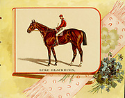 Luke Blackburn (1877–1904) was a thoroughbred race horse born and bred in Tennessee by Capt. James Franklin. He was inducted into the US Horse Racing Hall of Fame in 1956. from the ' Album of celebrated American and English running horses ' by Kinney Bros Published in New Your in 1888 By Kinney Brothers to advance the sales of their cigarette brands. The Kinney Tobacco Company was an American cigarette manufacturing firm that created the Sweet Caporal cigarette brand and promoted it with collectible trading cards. Being a leading cigarette manufacturer of the 1870-1880s, it merged in 1890 into the American Tobacco Company.
