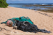ghost fishing nets and other marine debris washed up on Larsen's beach, Moloa'a, Kauai, Hawaii, USA ( Central Pacific Ocean )