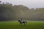 Young woman rides a bay horse before competing in Dressage competition, Oxfordshire, United Kingdom