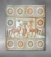 4th century Roman mosaic panel of the Goddess Venus from Ulules (Elles), Tunisia. Venus of Aphrodite is accompanied by 2 female centaurs, half women half horse creatures, known as Am(azoniu) and Titonius. The are crowning Venus The Bardo Museum, Tunis, Tunisia. The Bardo Museum, Tunis, Tunisia Grey background .<br /> <br /> If you prefer to buy from our ALAMY PHOTO LIBRARY  Collection visit : https://www.alamy.com/portfolio/paul-williams-funkystock/roman-mosaic.html - Type -   Bardo    - into the LOWER SEARCH WITHIN GALLERY box. Refine search by adding background colour, place, museum etc<br /> <br /> Visit our ROMAN MOSAIC PHOTO COLLECTIONS for more photos to download  as wall art prints https://funkystock.photoshelter.com/gallery-collection/Roman-Mosaics-Art-Pictures-Images/C0000LcfNel7FpLI