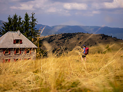 Women hiker walking towards Ferme Auberge Rothembrunnen wood cabin at Petit Ballon, Vosges, France