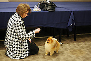 Joan Behrend and her Pomeranian ChLil Behrs Honey Nut Cheerio at The133rd Westminister Kennel Club Dog Show Press Conference announcing The Dogue De Bordeaux debut at the Westminister Kennel Club Dog Show held at the Pennsylvania Hotel Sky Top Ball Room on February 5, 2009 in New York City