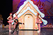 Lana's Dance Studio performs the Nutcracker at Gavalin College Theater in Gilroy, California, on December 20, 2013. (Stan Olszewski/SOSKIphoto)