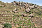 The wild landscape of Pantelleria, an Italian island off the coasts of Sicily and Tunisia.