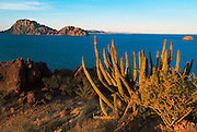 MEXICO, BAJA CALIFORNIA SOUTH Sea of Cortez near Loreto with the rocky Isla Danzante in the background