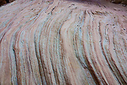 Colorful sandstone layers are revealed in the slot of Little Wild Horse Canyon. San Rafael Swell Recreation Area, Utah, USA. Hike a classic loop from Little Wild Horse Canyon to Bell Canyon, in the San Rafael Reef. This great walk (an 8.6-mile circuit with 900 feet gain) is a short drive on a paved road from Goblin Valley State Park. The hike via fascinating narrow slot canyons and open mesas requires some scrambling over rocks, possibly through shallow water holes (which were dry for us on Sept 20, 2020 but wet in April 2006). Thanks to the greatest legislative victory in the history of SUWA (Southern Utah Wilderness Alliance), in 2019, Congress passed the Emery County Public Land Management Act, which declared 663,000 acres of wilderness, including Little Wild Horse Canyon Wilderness, in San Rafael Swell Recreation Area, Utah, USA. The Navajo and Wingate sandstone of the San Rafael Reef was uplifted fifty million years ago into a striking bluff which now runs from Price to Hanksville, bisected by Interstate 70 at a breach fifteen miles west of the town of Green River.