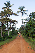 Two motorcyclists ride down red dirt road through the forest interior with palms, Principe, Sao Tome and Principe<br /> Sao Tome and Principe, are two islands of volcanic origin lying off the coast of Africa. Settled by Portuguese convicts in the late 1400s and a centre for slaving, their independence movement culminated in a peaceful transition to self government from Portugal in 1975.