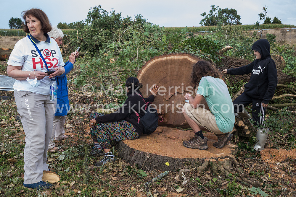 Anti-HS2 activists pay their respects to a still-damp mature oak tree felled alongside the Fosse Way as part of works in connection with the HS2 high-speed rail link on 24th August 2020 in Offchurch, United Kingdom. The controversial HS2 infrastructure project is currently expected to cost £106bn and will destroy or significantly impact many irreplaceable natural habitats, including 108 ancient woodlands.