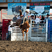 Cory Byrd on Red Eye Rodeo SE9 at the Darby Broncs N Bulls event Sept 7th 2019.  Photo by Josh Homer/Burning Ember Photography.  Photo credit must be given on all uses.