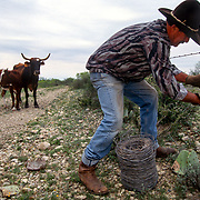 Sonny Wipff of Eagle Pass, Texas, repairs fence cut the night before allegedly by smugglers. Sonny's herd faces quarantine if any of the cattle escape his ranch. After 115 yrs of working the  ranch near the US Mexico border, his family is moving out to get away from the problems of smugglers.