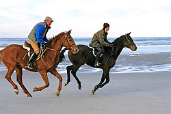 Horses And Riders On Beach (All Feet Off Ground)