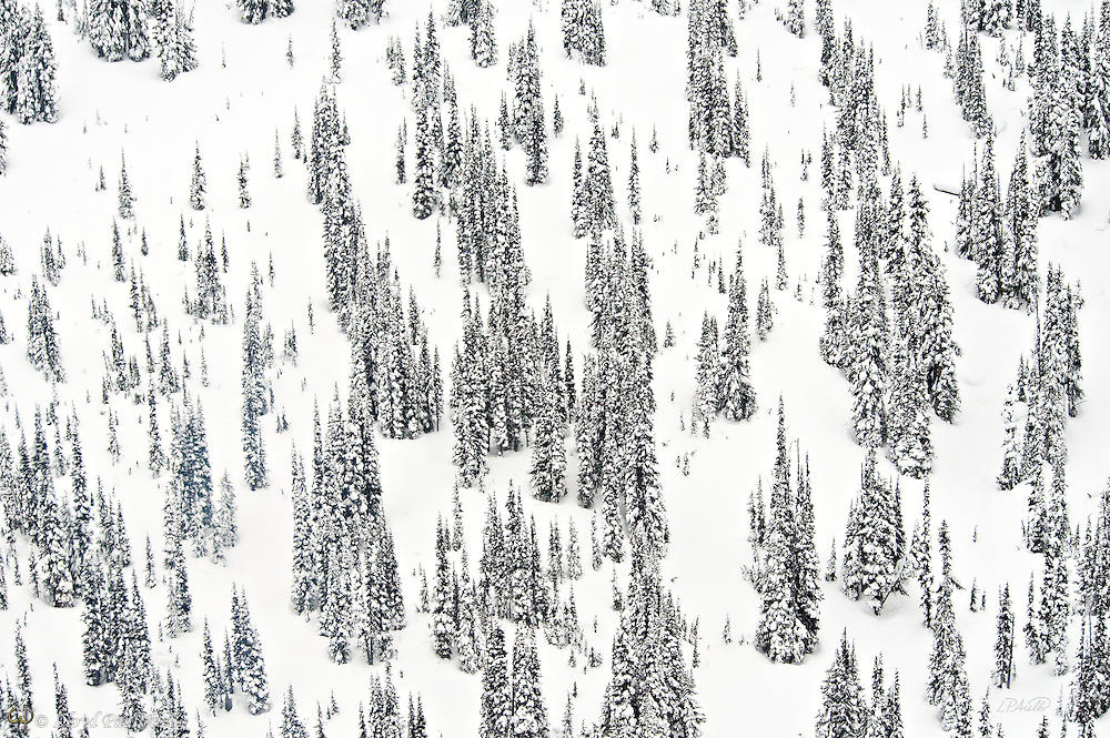Upper reaches of Whistler Mountain in British Columbia photographed by helicopter during a February snowstorm