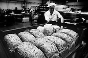 Experienced baker readys freshly baked loaves for delivery at Parsons Bakery in Bristol. Parsons bakery is an independent business has several dozen shops selling baked goods