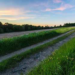 A tractor path in the fields at Pearl Farm in Loudon, New Hampshire. Dusk.