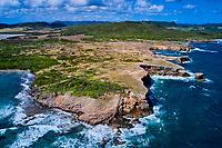 France, Martinique, Sainte-Anne, Savane des Pétrifications // France, West Indies, Martinique, Sainte-Anne, Petrification Savannah
