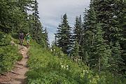 Hikers on Naches Peak Loop Trail in Mt Rainier National Park.