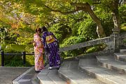 Japanese women dressed in Traditional Kimonos at the Kiyomizu-dera Temple, Kyoto, Japan